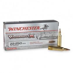 .22-250REM Winchester 55gr Varmint-X
