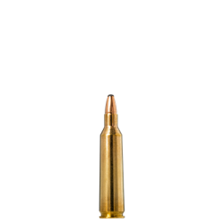 .22-250REM Norma 55gr Oryx