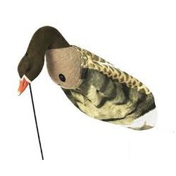 Sillosocks lokvogel gans grauwe head up